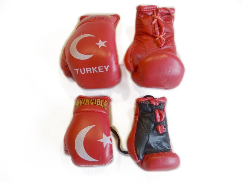 Invincible-Mini-Boxhandschuhe Turkey