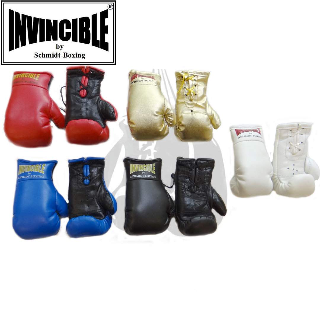 Invincible-Mini-Boxhandschuhe groß